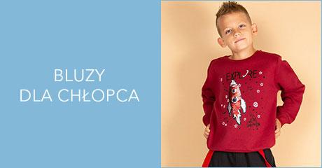 Bluzy dla chłopców hurtownia online